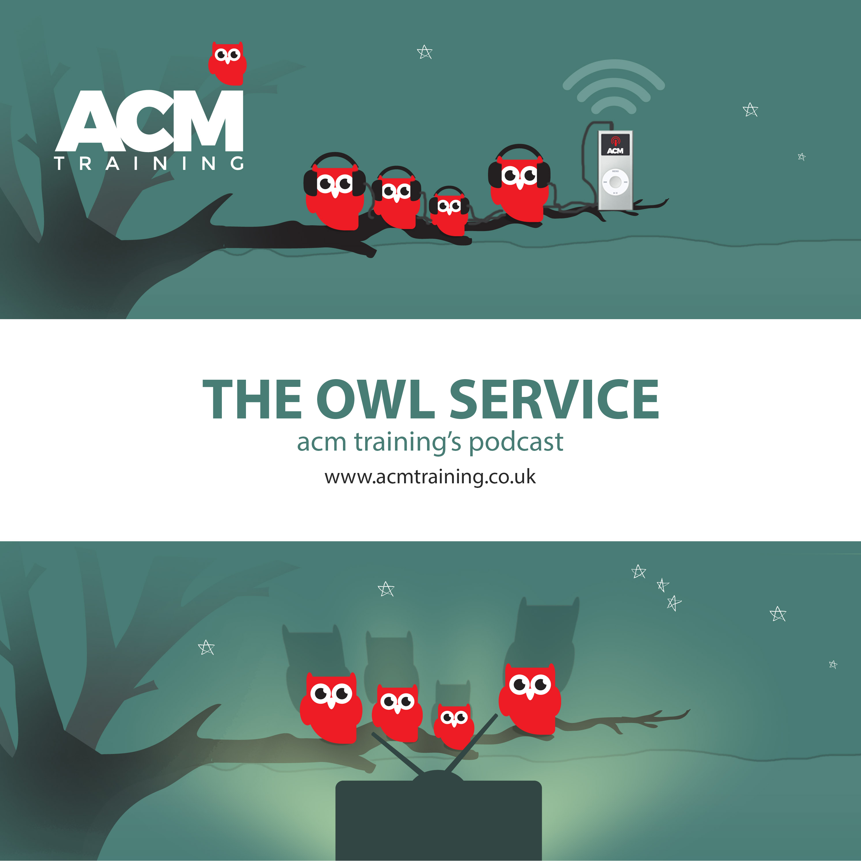 The Owl Service - ACM Training's podcast